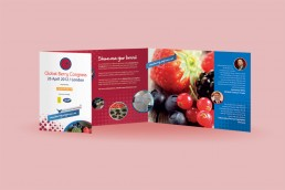 Global Berry Congress, brochure